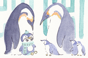 illustration pingouins